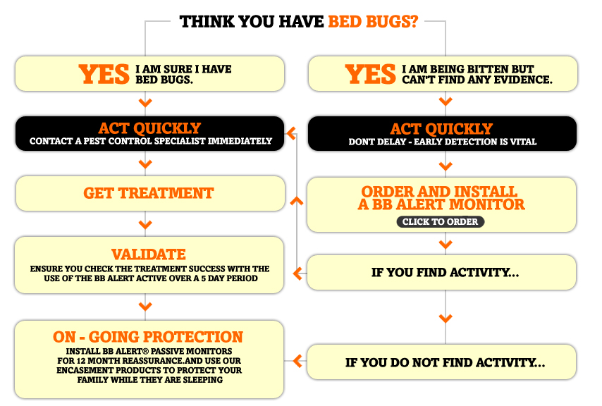 Bed Bug Removal Cost Calgary